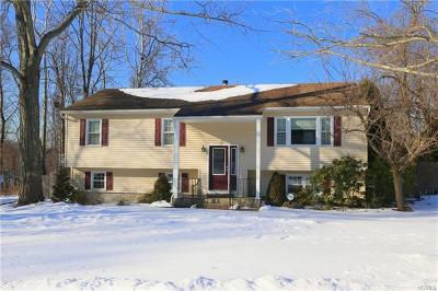 Westchester County Single Family Home For Sale: 662 Rachel Drive