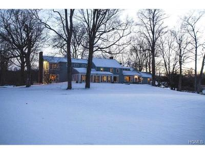 Dutchess County Single Family Home For Sale: 1078 Netherwood Road