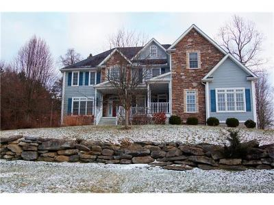 Dutchess County Single Family Home For Sale: 22 Winter Park Drive