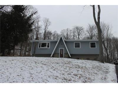 Dutchess County Single Family Home For Sale: 17 Burbank Road