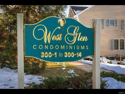 Westchester County Condo/Townhouse For Sale: 300 West Street #11