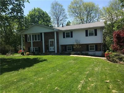 Blauvelt Single Family Home For Sale: 38 Bluefields Lane