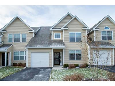 Dutchess County Condo/Townhouse For Sale: 25 Halley Court