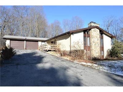 Dutchess County Single Family Home For Sale: 4 Contour