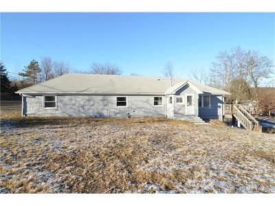 Staatsburg Single Family Home For Sale: 905 North Quaker