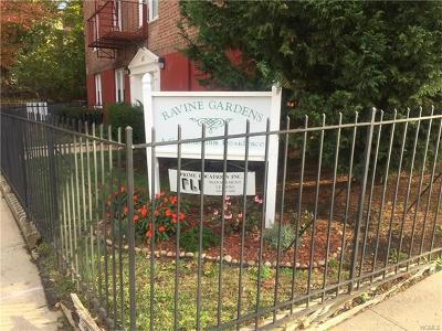 Yonkers Condo/Townhouse For Sale: 47 Point Street-2-B 2b