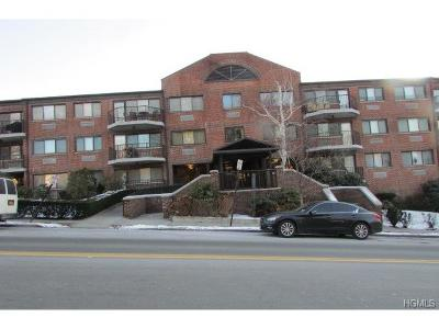 Yonkers Condo/Townhouse For Sale: 66 Crisfield Street #1T