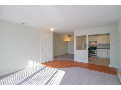Peekskill Condo/Townhouse For Sale: 29 Huntington Circle #29