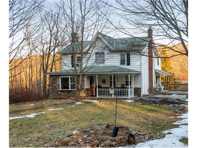Pleasant Valley NY Single Family Home For Sale: $265,000