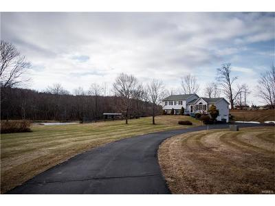 Lagrangeville Single Family Home For Sale: 25 Meadow Ridge