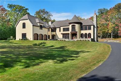 Armonk Single Family Home For Sale: 29 Sarles Street