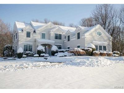 Poughkeepsie Single Family Home For Sale: 19 Michaels