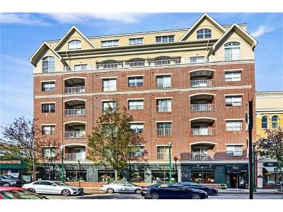 New Rochelle Rental For Rent: 543 Main Street #402