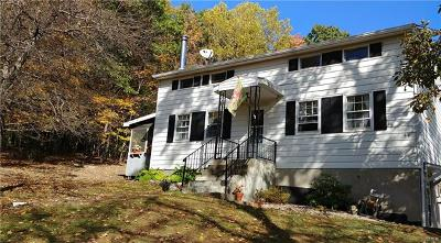 Pine Bush Single Family Home For Sale: 44 Ferguson Road