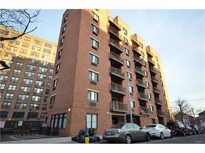 Bronx Condo/Townhouse For Sale: 1600 Parkview Avenue #5B