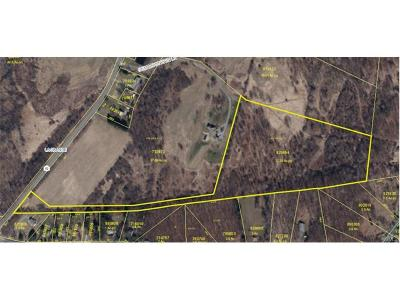 Lagrangeville Residential Lots & Land For Sale: 82 Route