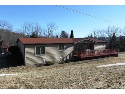 Livingston Manor Single Family Home For Sale: 142 Hessinger Lare Road