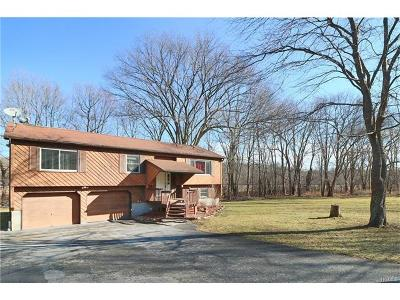 Stormville Single Family Home For Sale: 339 Stormville Mountain Road