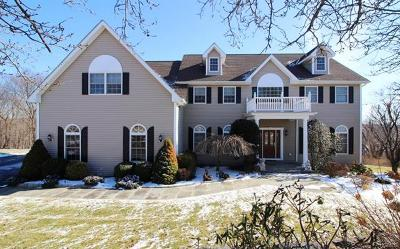 Mahopac Single Family Home For Sale: 14 Kaitlin Drive