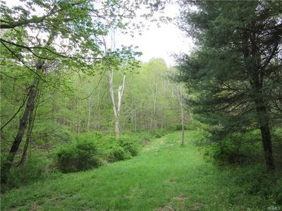 Amenia Residential Lots & Land For Sale: 4993 Route 22