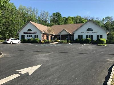 Sullivan County Commercial For Sale: 60 Main Street