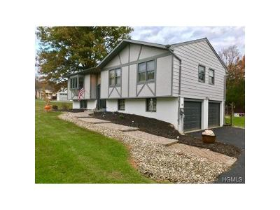 Washingtonville Single Family Home For Sale: 5 Amy Road
