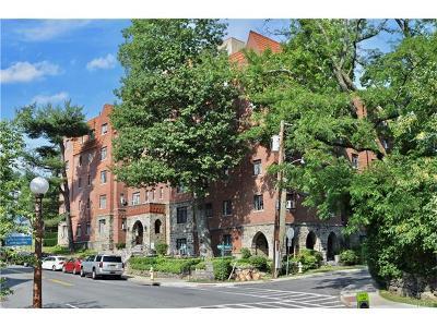 Bronx Rental For Rent: 22 Sagamore Road #1A