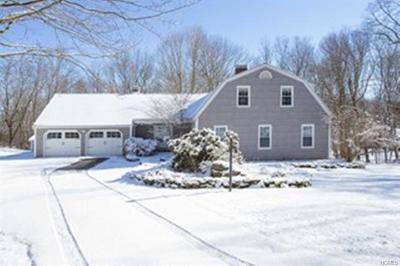 Lagrangeville Single Family Home For Sale: 62 Miller Hill Drive
