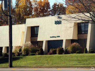 Mount Kisco Commercial For Sale: 101 South Bedford Road #203A