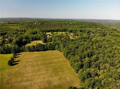 Sullivan County Residential Lots & Land For Sale: (9.38) Bowers Road