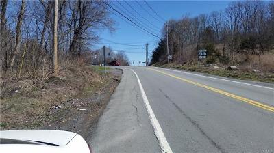 Chester Commercial For Sale: Nys Rte 17m