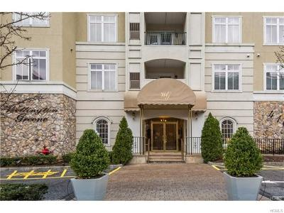Port Chester Condo/Townhouse For Sale: 410 Westchester Avenue #107