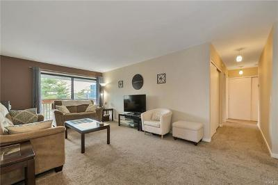 White Plains Condo/Townhouse For Sale: 23 Hillside Terrace #B