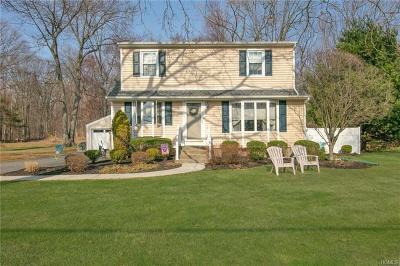 Blauvelt Single Family Home For Sale: 38 Swannekin Road