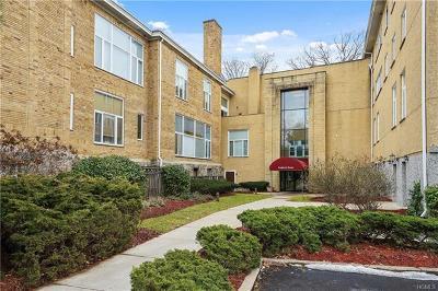 Ardsley Condo/Townhouse For Sale: 520 Ashford Avenue #30