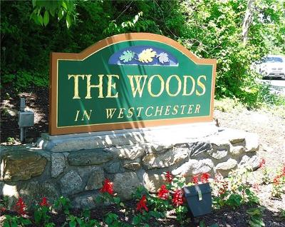Ossining Condo/Townhouse For Sale: 133 Woods View Lane