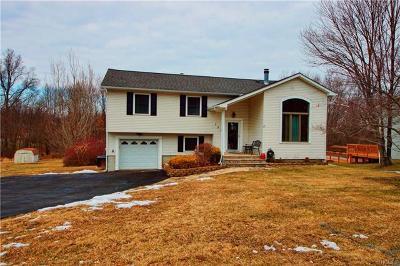 Washingtonville Single Family Home For Sale: 151 Barnes Road