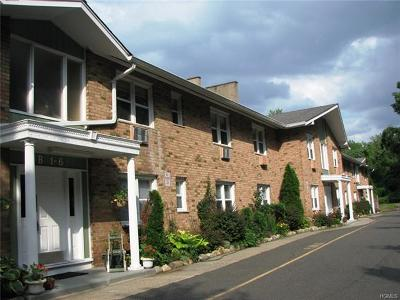 Condo/Townhouse For Sale: 100 Dowd Street #B17