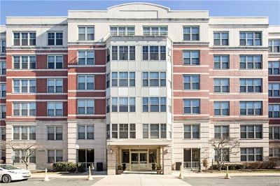 White Plains Condo/Townhouse For Sale: 300 Mamaroneck Avenue #628