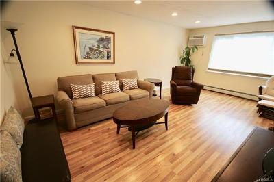 Rockland County Condo/Townhouse For Sale: 351 Skyline Drive