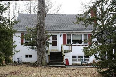 Rockland County Single Family Home For Sale: 18 Utopian Place