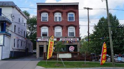 Monticello Commercial For Sale: 400 Broadway