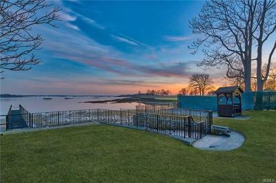 New Rochelle Single Family Home For Sale: 43 Kensington Oval