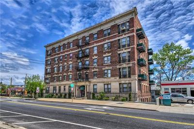 New Rochelle Rental For Rent: 36 Echo Avenue #5C
