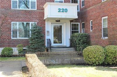 New Rochelle Rental For Rent: 220 Pelham Road #4K