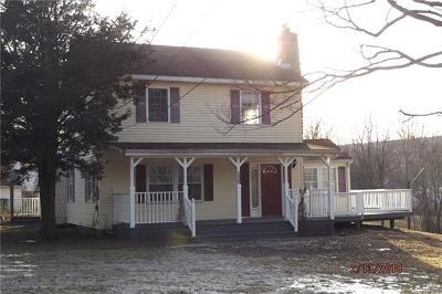 Lagrangeville Single Family Home For Sale: 232 Dorn Road