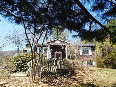 Single Family Home For Sale: 415 Vineyard Avenue
