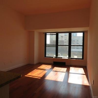 New Rochelle Rental For Rent: 100 New Roc City Place #218