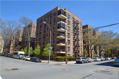 Bronx Rental For Rent: 665 Thwaites Place