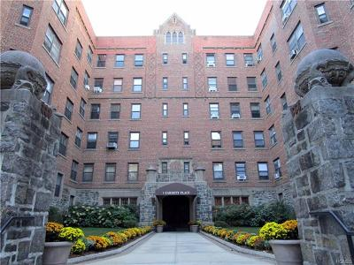 Bronx Rental For Rent: 1 Garrett Place #1C